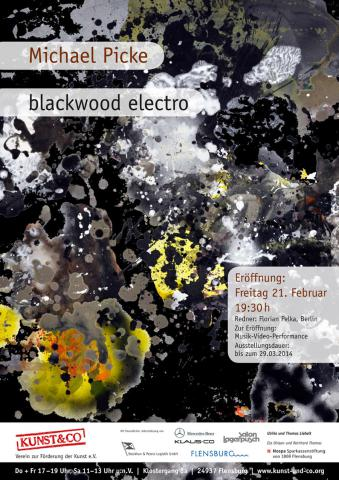 "Michael Picke - ""blackwood electro"""